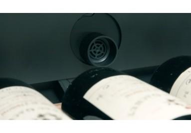 Wielostrefowe modele szaf chłodniczych na wino